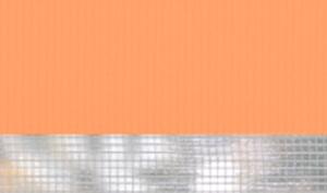Basic-морковный